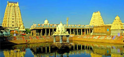 Kanchipuram - Chidambaram - Pondicherry - Mahabalipuram Tour